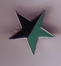 Emaillestern schwarz/grün