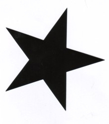 Aufkleber 12:  Stern schwarz gross
