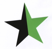 Aufkleber 14: Stern schwarz/grün gross