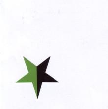 Aufkleber 19: Stern schwarz/grün klein