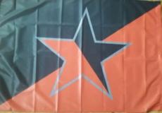 Fahne 12