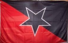 Fahne 14