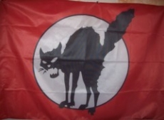 Fahne 17