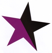 Aufkleber 15: Stern schwarz/lila gross